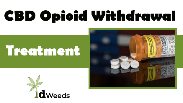 CBD for Opioid Withdrawal