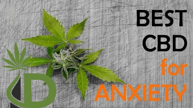Best CBD for Anxiety and Depression with Charts